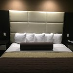 Best Western Plus Lackland Hotel & Suites Foto