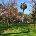 Foto de Forsyth Park