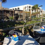 Driftwood Resort Image