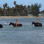 Turf and Surf ride: Trina runs a great equestrian centre! Horses are well cared for!