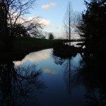 Tranquility at the arboretum