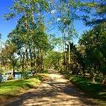Chachagua Rainforest Eco Lodge Foto