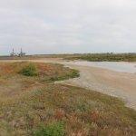 Foto de Port Aransas Nature Preserve at Charlie's Pasture