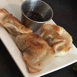 The best fried pork dumplings I have ever had!