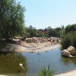 Foto di Friguia Park