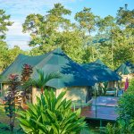 Your luxury camp, situated on a hilltop in the middle of the Uvita jungle!