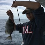 Another trigger fish that had to be released back to the ocean. He loved reeling that fish in.