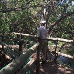 Photo of Kwena Crocodile Farm