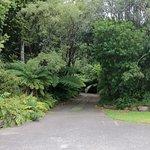 Waimanu Farm Stay, nice and quiet surroundings!