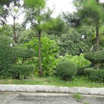 Topiary at Guia Fortress