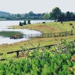 Drumcoura Lake