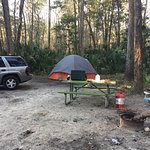 Photo de Chassahowitzka River Campground