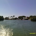 Black River Safari Cruise