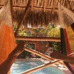 Poolside palapa with 3 hammocks