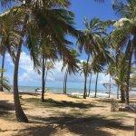 Foto de Foz do Sauípe Hotel Eco Resort