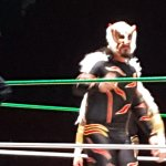 One of the rudos (rude, or bad guys) we saw at Lucha Libre while on our tour