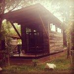 Foto de Fireside Resort