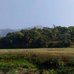 Nature at Sri Bagandeshwara Temple