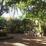 Precious Garden Restaurant and coffee house offers a warm welcome to all visitors. Sit out under