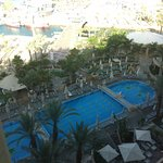 Foto di Queen of Sheba Eilat