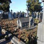 Foto de Cementerio de Glasnevin