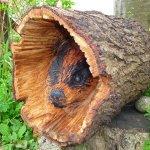 One of the garden wood sculptures