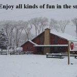 All kinds of winter fun.