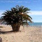 Photo of Altea Beach