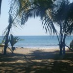 Fenix Hotel - On The Beach Picture