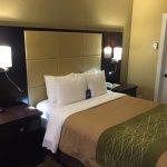 Comfort Inn Standard Room