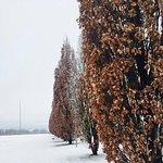 Winter auf der Landschaftstreppe