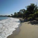 Photo de Sand Dollar Beach Bed & Breakfast