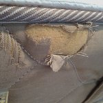 Ripped mattress