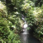 Photo de Sarinbuana Eco Lodge Restaurant