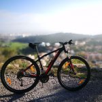 "Specialized Rockhopper Disc 29"" 2017"
