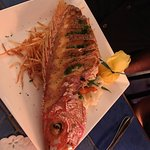 Whole Grilled Snapper