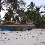 Beach walk - abandoned boat