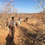 Horse back morning trail