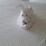 Cute!!! Towel animal!