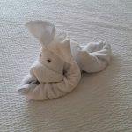 Foto di Residence Inn Orlando Convention Center