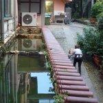 Villa delle Rose Photo