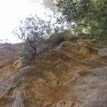 Photo de Agia Irini Gorge