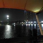 Zdjęcie 307146