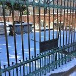 Benjamin Franklin's Grave Foto