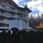Photo de Hotel Piz Galin