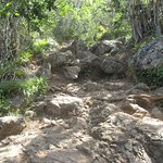This is the small rocky path, bigger rocks to climb at the top