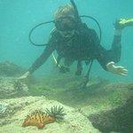 Photo of Galapagos Tip Top Dive & Training