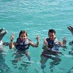 Photo of Dolphin Island