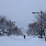 花禪之庄外面冬景