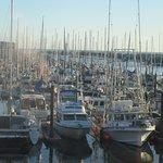View from Table, Johnny's Harborside, Santa Cruz, CA